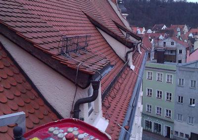 Wartung eines Dachs